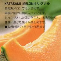 mutsumi_01