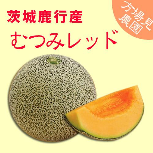 mutsumi_main