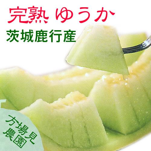 yuka_main